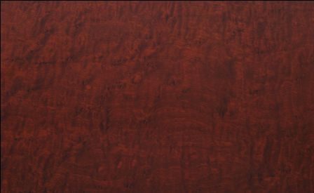 birdseye maple plywood